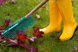 spring cleaning outdoor tips